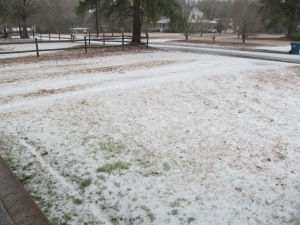 This is ice in our yard not snow; Feb 2014 Winter Storm in South Carolina